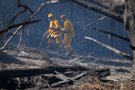 Interim observations published by bushfire Royal Commission